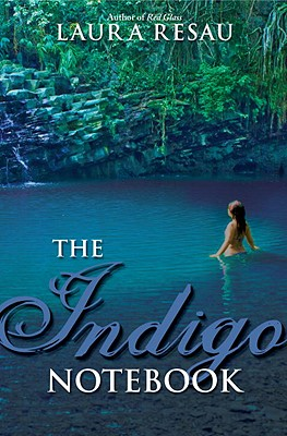 The Indigo Notebook (Notebook Series #1) Cover Image