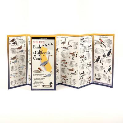 Sibley's Birds of the California Coast Cover Image