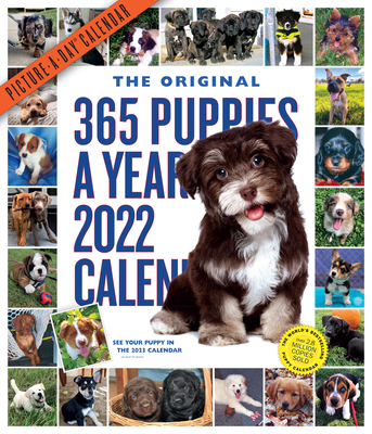 365 Puppies-A-Year Picture-A-Day Wall Calendar 2022: The Most Adorable, Irresistible Puppies. Cover Image