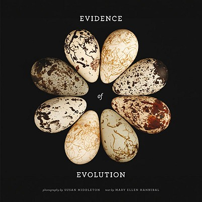 Evidence of Evolution Cover Image