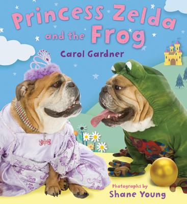 Princess Zelda and the Frog Cover Image