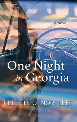 One Night in Georgia Cover Image