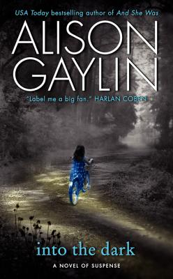 Into the DarkAlison Gaylin