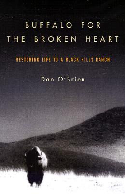 Cover for Buffalo for the Broken Heart