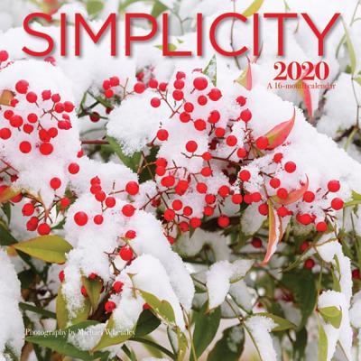 Simplicity 2020 Mini 7x7 Wyman Cover Image