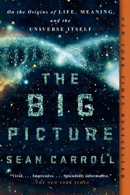 The Big Picture: On the Origins of Life, Meaning, and the Universe Itself Cover Image