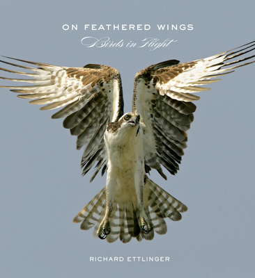 On Feathered Wings Cover