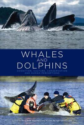 Whales and Dolphins: Cognition, Culture, Conservation and Human Perceptions (Earthscan Oceans) Cover Image
