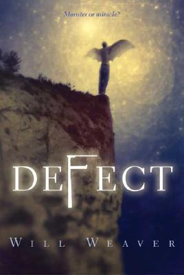 Defect Cover