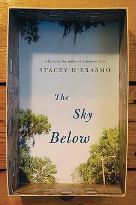 The Sky Below Cover