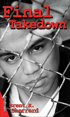 Final Takedown Cover Image