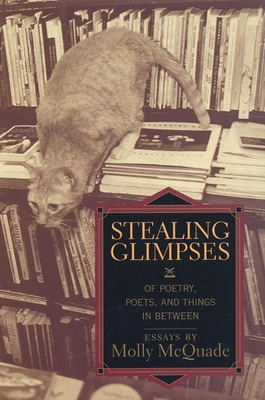 Stealing Glimpses Cover