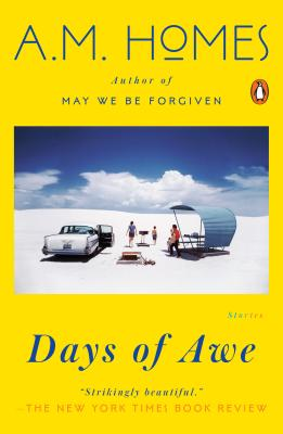 Days of Awe: Stories Cover Image