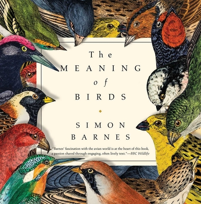 Cover for The Meaning of Birds