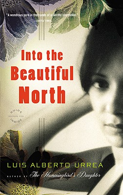 Into the Beautiful North: A Novel Cover Image