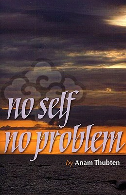 No Self No Problem Cover
