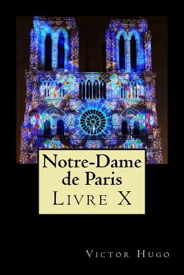 Notre-Dame de Paris (Livre X) Cover Image