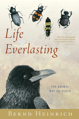 Life Everlasting: The Animal Way of Death Cover Image