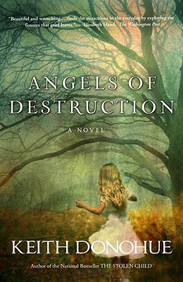 Angels of Destruction Cover