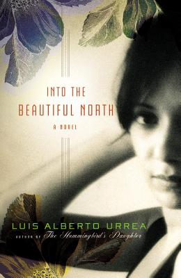 Into the Beautiful North Cover