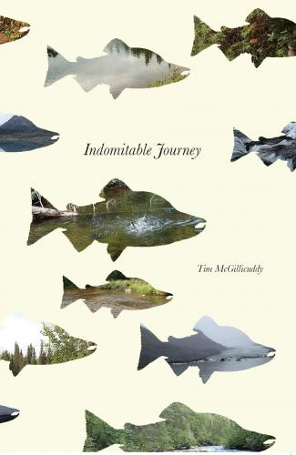 Indomitable Journey Cover Image