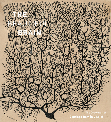 The Beautiful Brain: The Drawings of Santiago Ramon y Cajal Cover Image