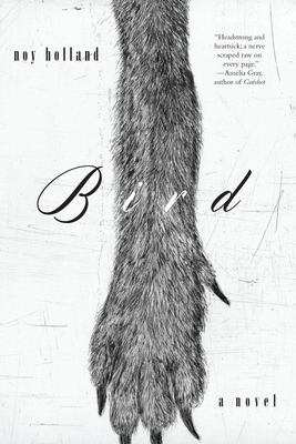Cover for Bird