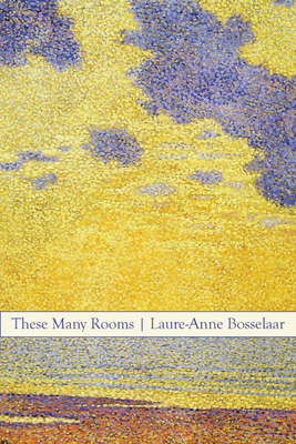 Cover for These Many Rooms