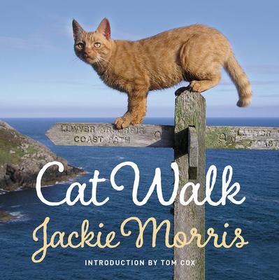 Cat Walk Cover Image