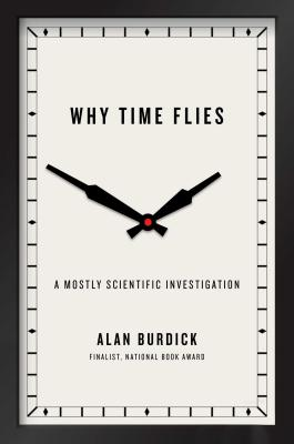 Why Time Flies: A Mostly Scientific Investigation Cover Image
