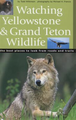 Watching Yellowstone & Grand Teton Wildlife Cover Image