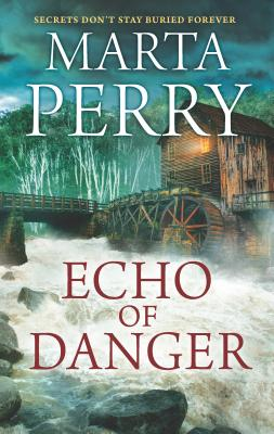 Echo of Danger Cover