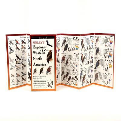 Sibley's Raptors of Western North America Cover Image