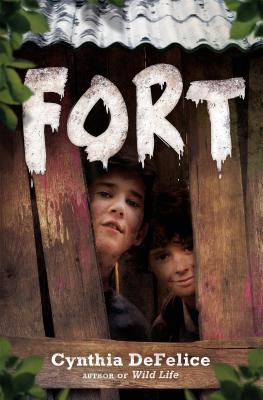 Cover for Fort