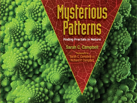 Mysterious Patterns: Finding Fractals in Nature Cover Image