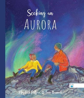 Seeking an Aurora Cover Image