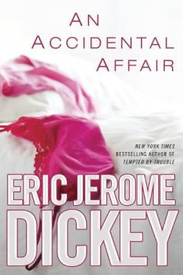 An Accidental Affair Cover