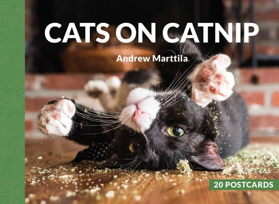 Cats on Catnip: 20 Postcards Cover Image