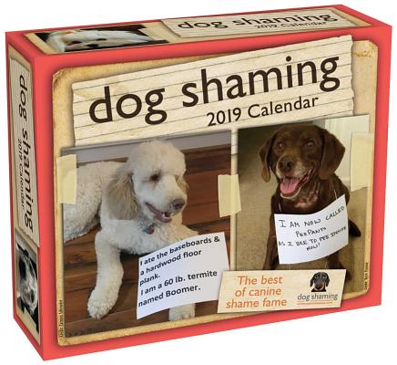 Dog Shaming 2019 Day-to-Day Calendar Cover Image
