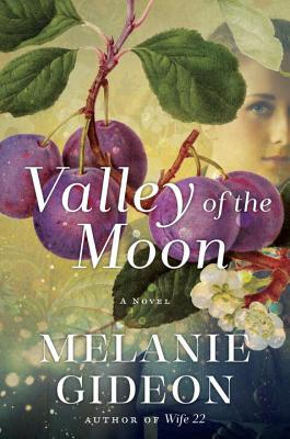 Valley of the Moon: A Novel Cover Image