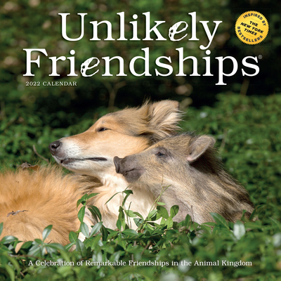 Unlikely Friendships Wall Calendar 2022 Cover Image