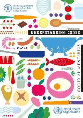 Understanding Codex Cover Image