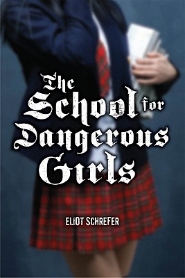 The School for Dangerous Girls Cover