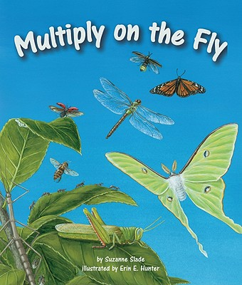 Multiply on the Fly Cover