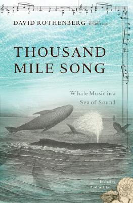 Thousand-Mile Song Cover