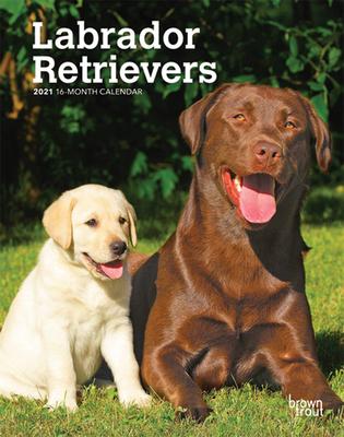 Labrador Retrievers 2021 Engagement Cover Image