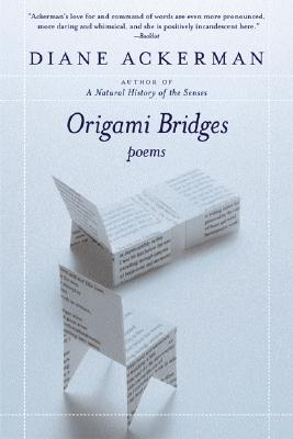 Origami Bridges Cover