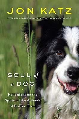 Soul of a Dog Cover