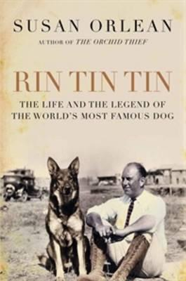 Rin Tin Tin Cover
