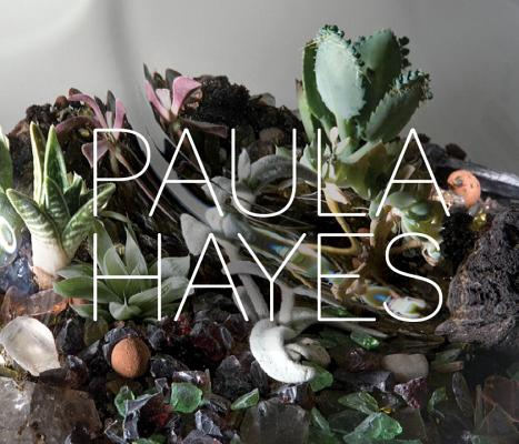 Paula Hayes Cover
